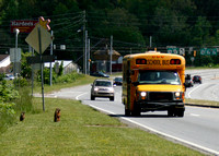 Groundhogs' First Day of School